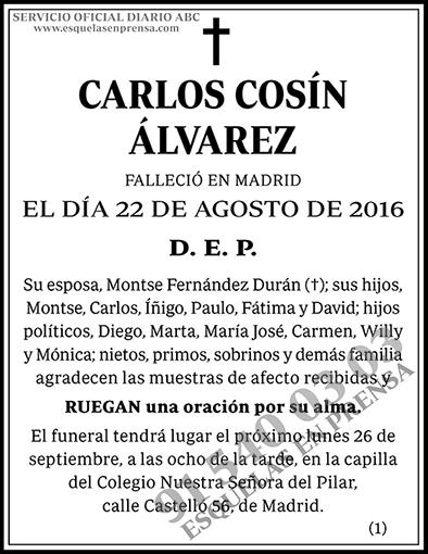 Carlos Cosín Álvarez
